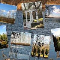 Тёплый январь,отдых на природе... :: Тамара (st.tamara)