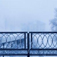 Углич.Туманный январь. :: Дмитрий Постников