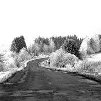 Зимняя дорога :: Диана Матисоне