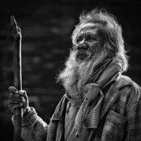 Pilgrim :: Roman Mordashev
