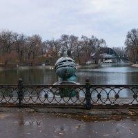 Пасмурным зимним вечером в парке им. Лазаря Глобы :: Denis Aksenov