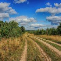 Дорога в лето... :: марк