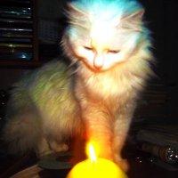 Кира и свеча :: Владимир Ростовский