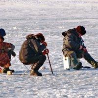 Много рыбаков... :: Владимир Гилясев
