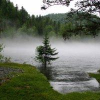 Телецкое озеро. Горный Алтай :: Владимир Юдин