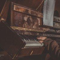 Пианист :: Светлана