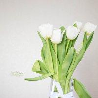Tюльпаны :: Наталья Повстина