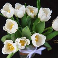 белые тюльпаны :: Наталья Повстина