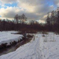 IMG_1594 - Первый день февраля :: Андрей Лукьянов