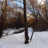 IMG_1607 - Первый день февраля :: Андрей Лукьянов