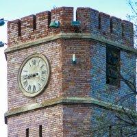 Башня с часами :: Дмитрий Перов