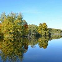 Зеркальное отражение в озере :: Милешкин Владимир Алексеевич