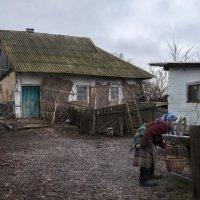 Старый сельский дворик :: Лидия Цапко
