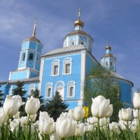 Смоленский собор :: Елена Елена