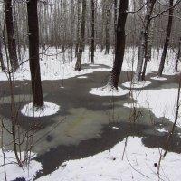 Вспоминая зиму прошлогоднюю - 2 :: Андрей Лукьянов