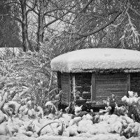 Заметает зима, заметает... :: Сергей В. Комаров