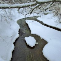 снежные берега :: Валентина. .