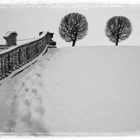 Марлинский вал. :: Lesya Vi