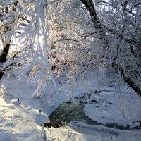 Мороз и солнце........ :: vitarmar иванов