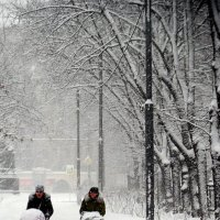 Зимние прогулки :: Борис Соловьев