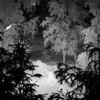 Одинокий фонарь.... :: Василий