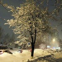 Снежный город :: Ирина Шарапова