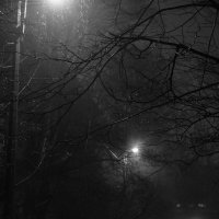 Туман :: Юрий Бобылев