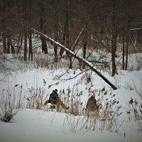 рыбалка в лесу :: Сергей Розанов
