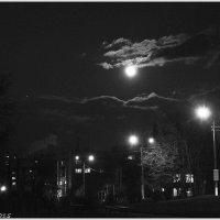 Нічне небо :: Степан Карачко
