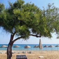 Пляжи Северного Кипра :: Anna Lipatova