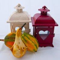 Декоративные тыквы (#15) :: Андрей ТOMА©