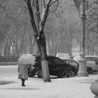 У природы нет плохой погоды..... :: Татьяна_Ш