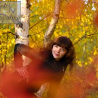 Осенний лес :: Любовь Распутина