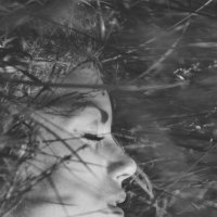 в траве мир останавливается :: Александр Засимович