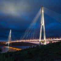 Мост.Владивосток. :: Владимир Леликов