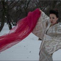 Ветер февраля... :: Наталья Rosenwasser