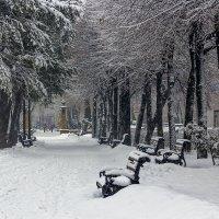А снег идет.. :: Юрий Стародубцев