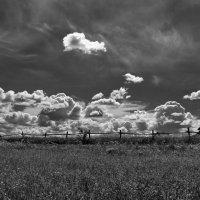 Облака... :: VADIM *****