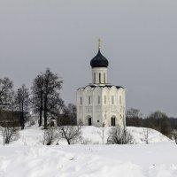 Церковь Покрова на Нерли. :: Yuri Chudnovetz