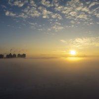 Утренний туман. Лахта. :: Алексей Красилин