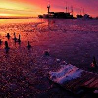 Утро в порту :: Дмитрий Близнюченко