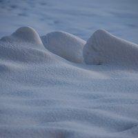 Снежная планета по имени Февраль.... :: Tatiana Markova