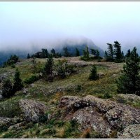 Таинство тумана :: юрий