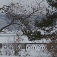 Новосибирск зимой :: Михаил Фролов
