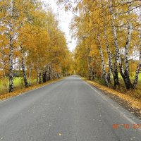 дорога на Зюраткуль :: petyxov петухов