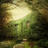 Заброшенный дом :: Маргарита Нижарадзе