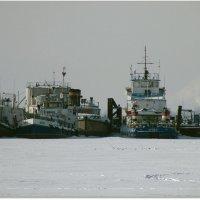 Волга затон. :: Eвгений