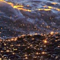 las estrellias del mar francesa :: noanoa delmar