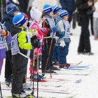 Юные лыжники :: nika555nika Ирина