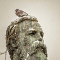 Птичка.... :: Марина Назарова